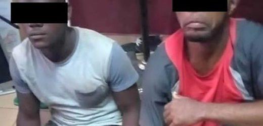Oyem: Trois individus en possession de 3 peaux de panthère aux arrêts !