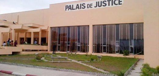 Affaire trafic d'ivoire à Libreville: jugement décevant !