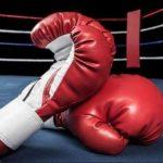 Championnat de Boxe Arabes : les nouveaux éléments d'information