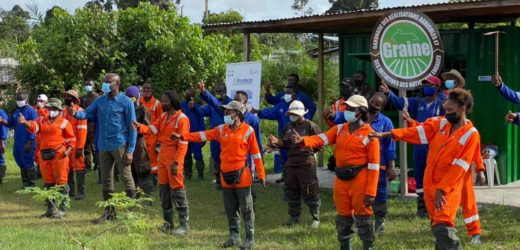 Gabon: Des jeunes formés aux métiers de l'agriculture à Bolokoboué