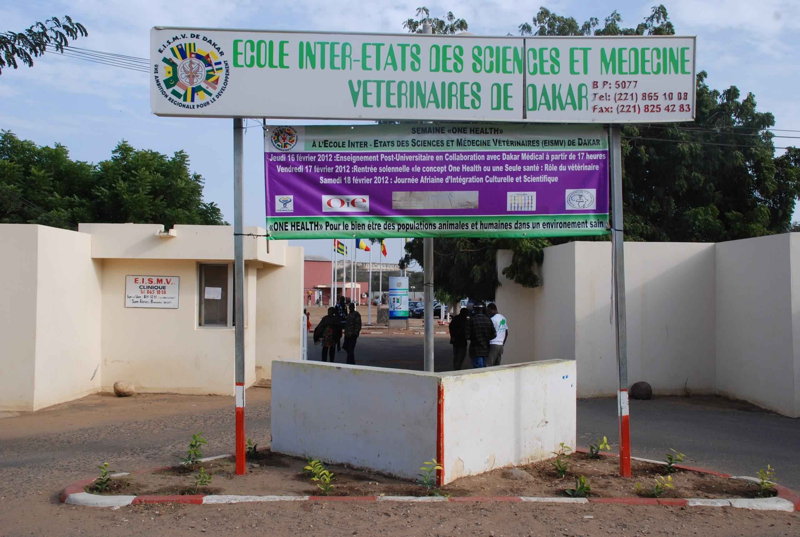 EISMV/ Arriérés de scolarité : les étudiants gabonais frôlent le pire