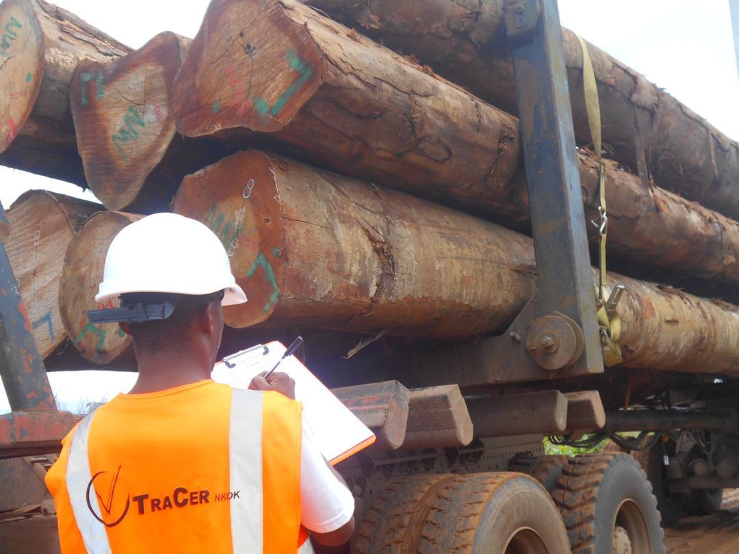 La reconnaissance du système Tracer par l'Union européenne : une nouvelle ère pour l'accès des bois transformés de la Zone économique de Nkok