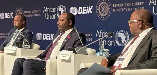 3e forum Turquie-Afrique: Hugues Mbadinga Madiya invite des grands groupes à investir au Gabon