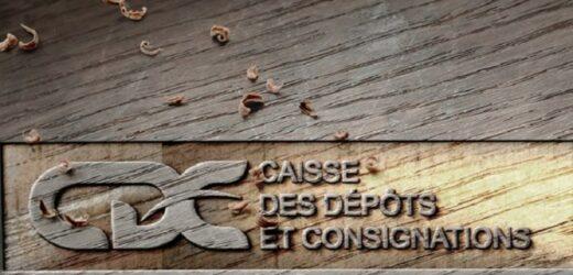 Le Gabon organise la 6ème édition de la Conférence internationale du Forum des Caisses de Dépôt